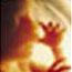 icon__0006_Unborn